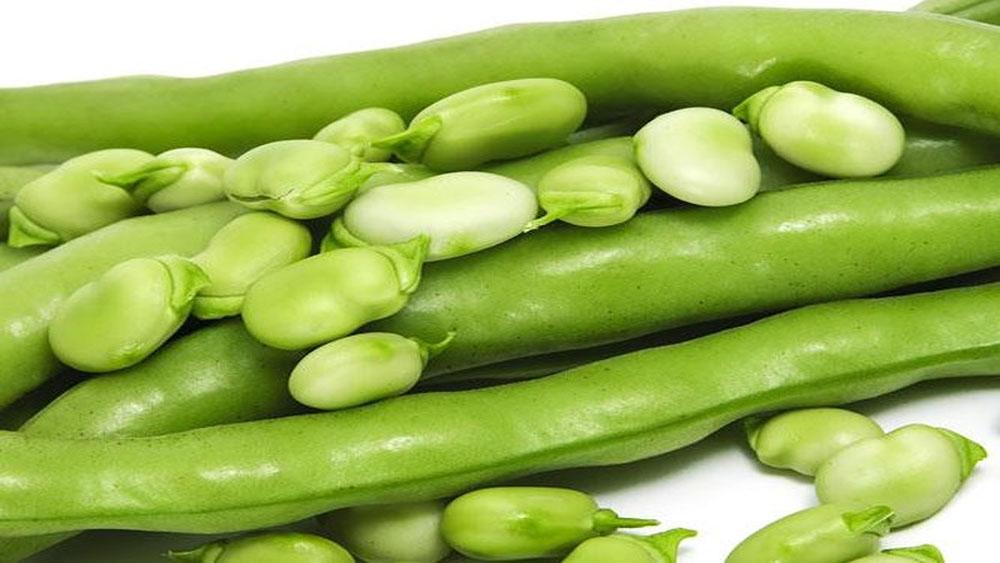 Lợi ích sức khoẻ từ đậu xanh ít người biết đến