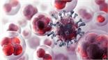 70% bệnh nhân ung thư khám, điều trị ở giai đoạn muộn