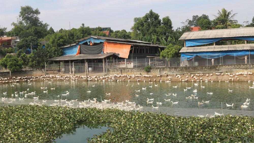 Kinh nghiệm xây dựng Đảng bộ trong sạch vững mạnh ở An Thượng