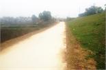Bê tông hóa đường gom dân sinh bờ đê sông Thương