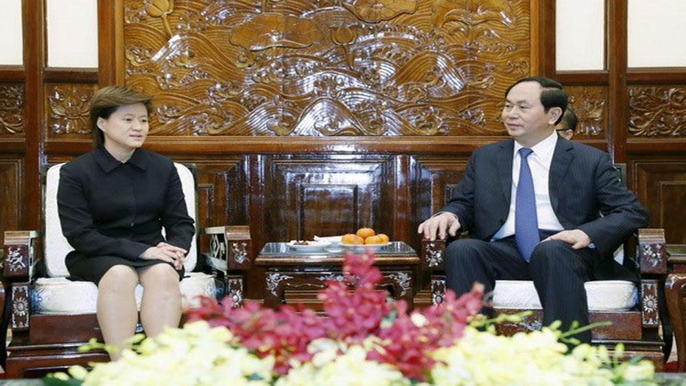 President hails Vietnam-Singapore strategic partnership