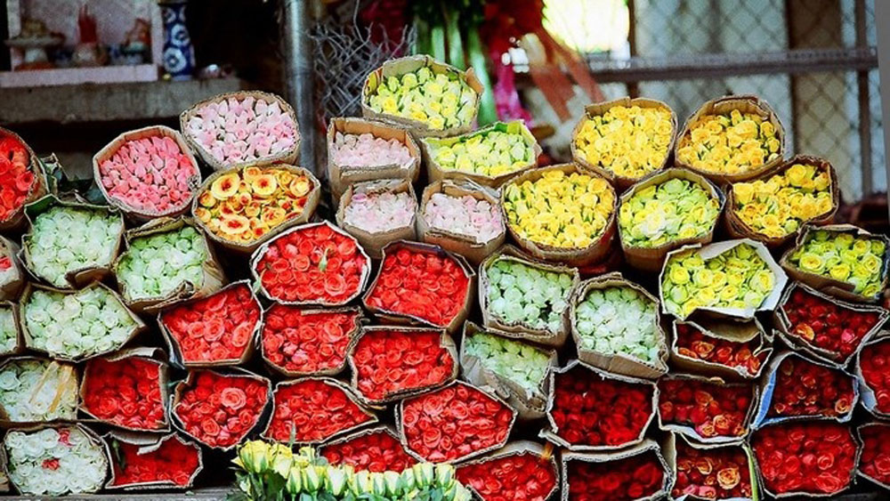 Dive into the Saigon market where colors stay vibrant overnight
