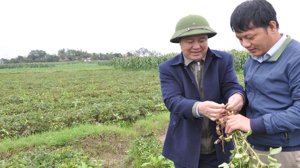 Gần 1 tỷ đồng hỗ trợ phát triển sản xuất nông nghiệp hàng hóa