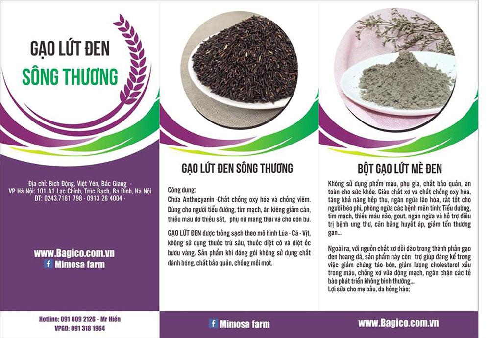 Một số sản phẩm từ lúa tím.