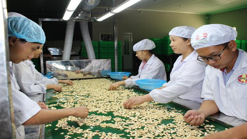 Tháng 1, xuất khẩu nông lâm thủy sản đạt hơn 3 tỷ USD