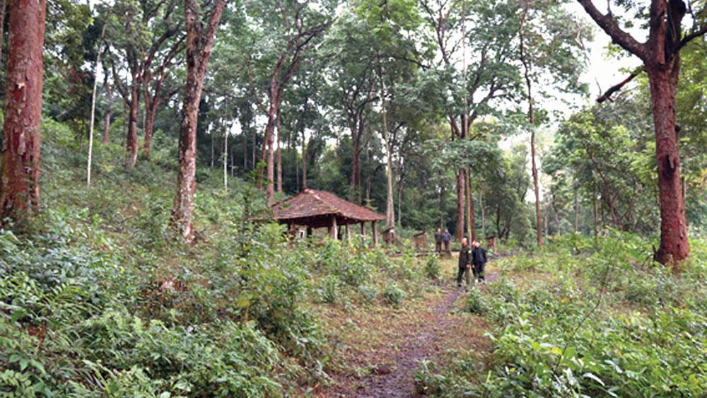 Chạm vào rừng thiêng Đá Húc