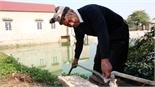Bắc Giang: Bảo vệ cây trồng, vật nuôi trước giá rét
