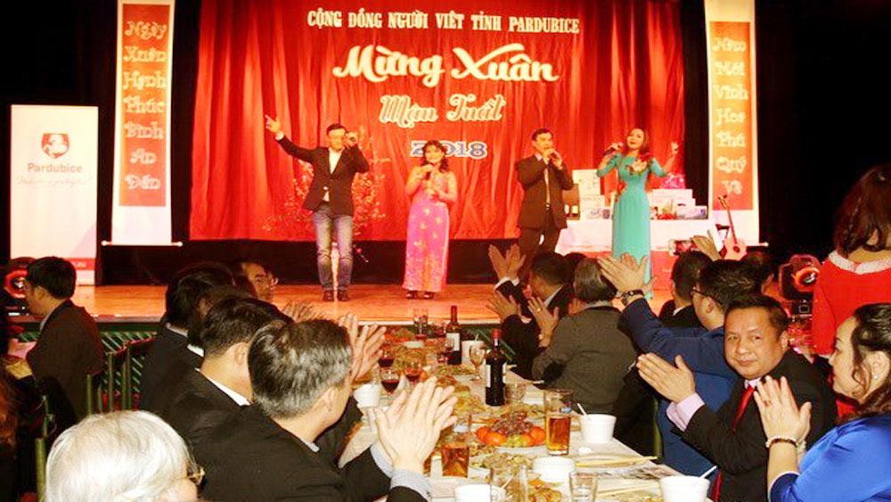 Overseas Vietnamese celebrate Lunar New Year