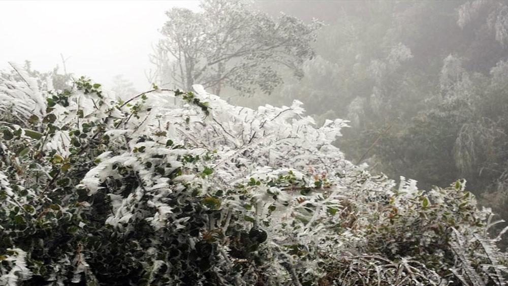 Hà Nội và Bắc Bộ vẫn giá buốt, vùng núi cao nhiều nơi rét 1-3 độ