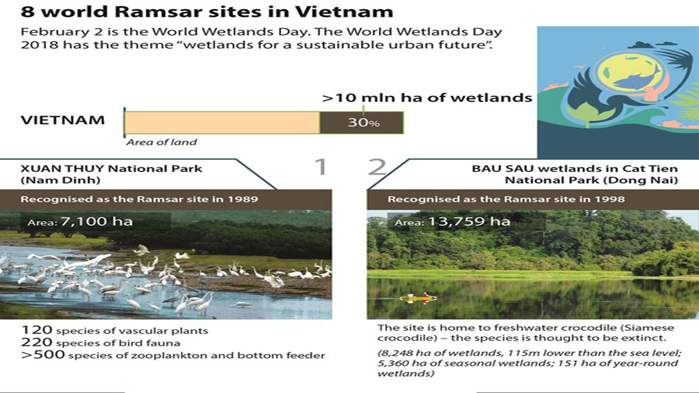 Eight world Ramsar sites in Vietnam
