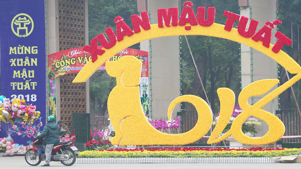 Vietnam puts on its best dress for Year of the Dog