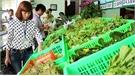 Tăng cường kiểm soát an toàn thực phẩm
