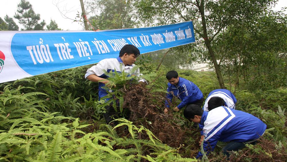Tăng cường công tác bảo vệ và phòng cháy, chữa cháy rừng