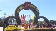 Hơn 280.000 lượt khách tới Đà Lạt du xuân trong dịp Tết