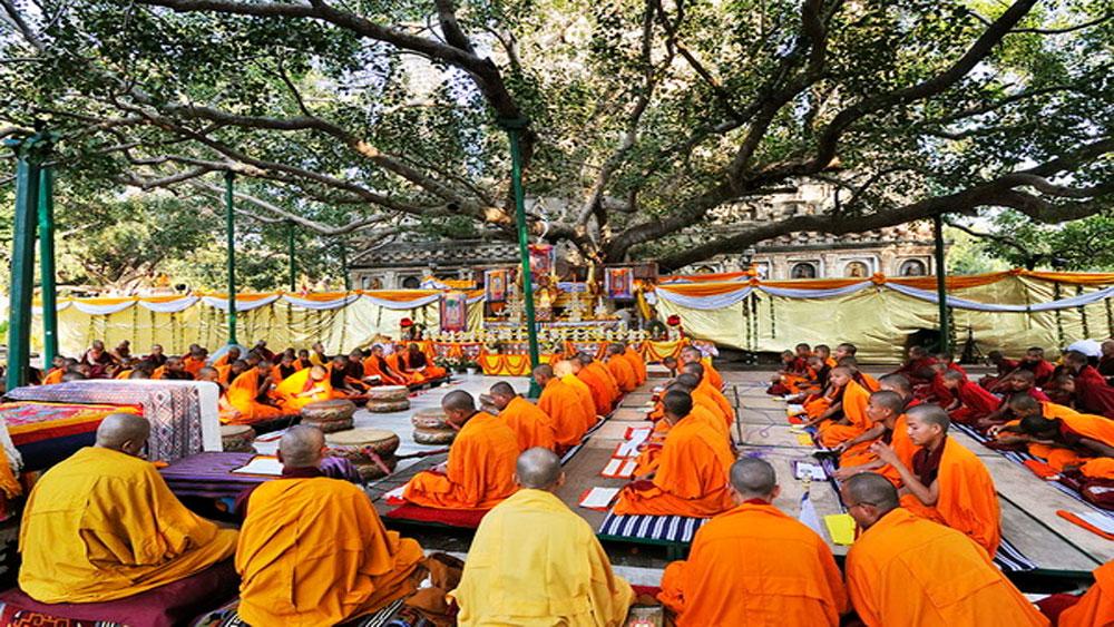 Đến Ấn Độ, hành hương, chiêm bái, Bồ đề đạo tràng