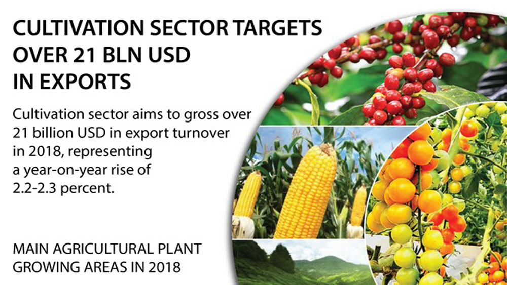 Cultivation sector targets over 21 bln USD in exports