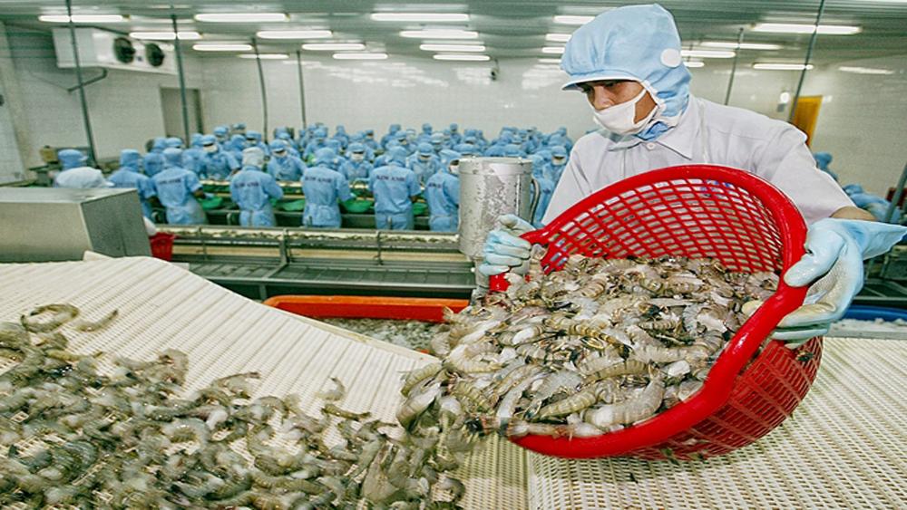 Những điểm lưu ý từ thị trường xuất khẩu hàng Việt Nam
