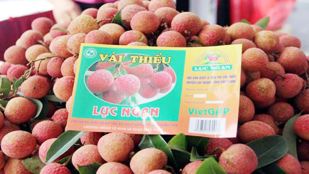 Geographical indication of Luc Ngan litchi protected in Japan