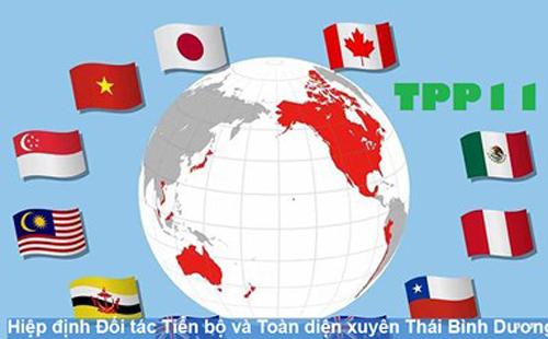63% doanh nghiệp tại Việt Nam kỳ vọng CPTPP tác động tích cực