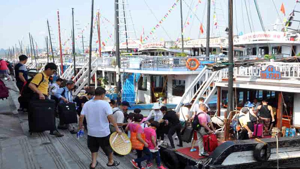 Đình chỉ hoạt động tàu du lịch vi phạm trên Vịnh Hạ Long