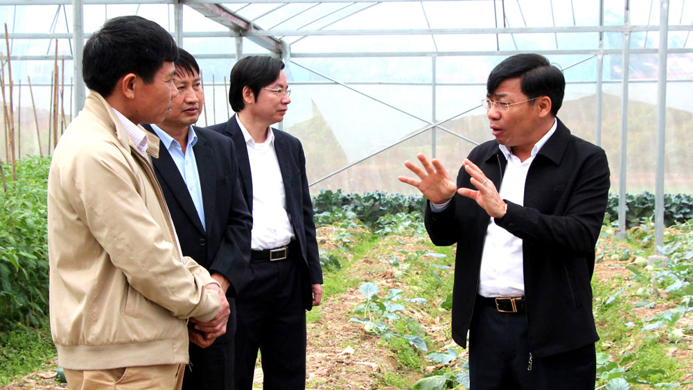 Đổi mới tổ chức sản xuất, nâng cao hiệu quả nông nghiệp công nghệ cao