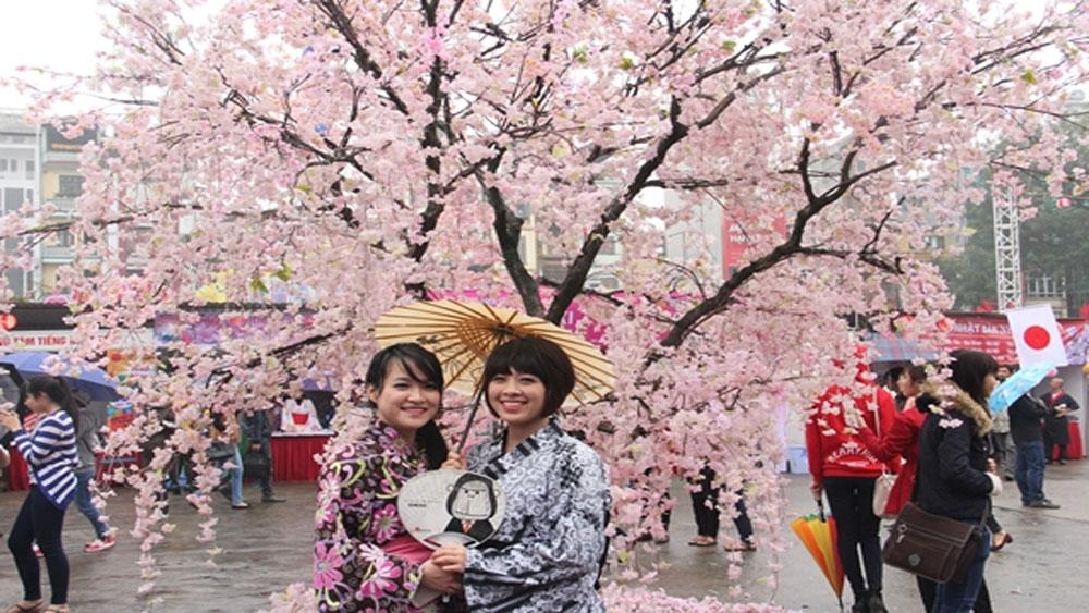Từ ngày 23 đến 26-3, tổ chức Lễ hội hoa anh đào Hà Nội