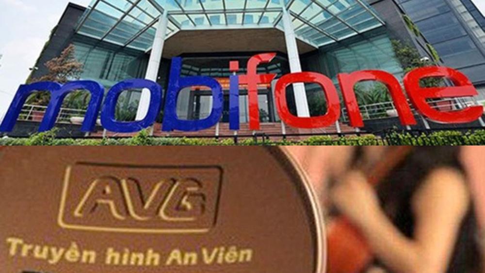 Thanh tra Chính phủ kiến nghị khởi tố điều tra Dự án Mobifone mua 95% cổ phần Công ty AVG