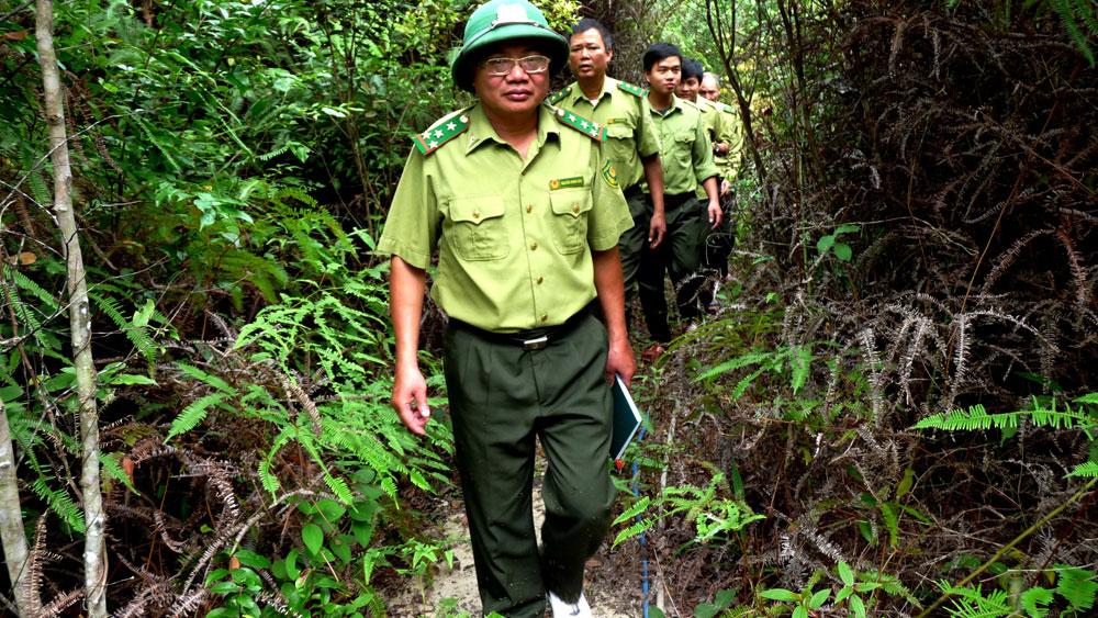 Hơn 1,2 nghìn bản cam kết bảo vệ rừng tự nhiên