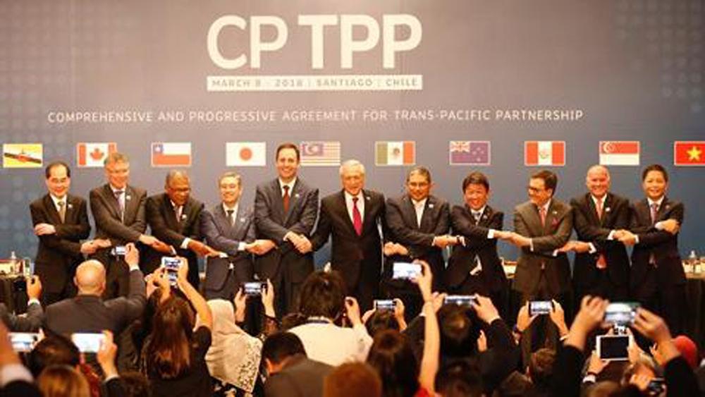 Việt Nam được hưởng nhiều ưu đãi trong CPTPP