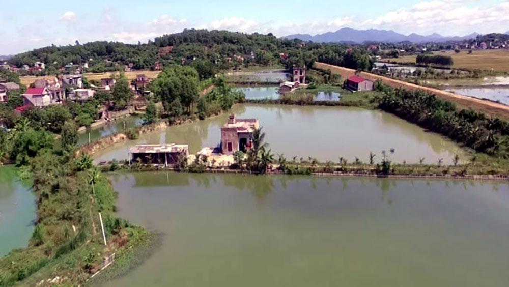 Các HTX thủy sản ở Đồng Phúc: Hoạt động hiệu quả nhờ liên kết sản xuất