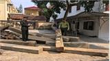 Tịch thu gỗ vận chuyển trái phép