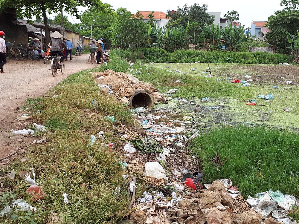 Bộ luật Hình sự sửa đổi, bổ sung năm 2017: Quy định rõ các vi phạm về môi trường