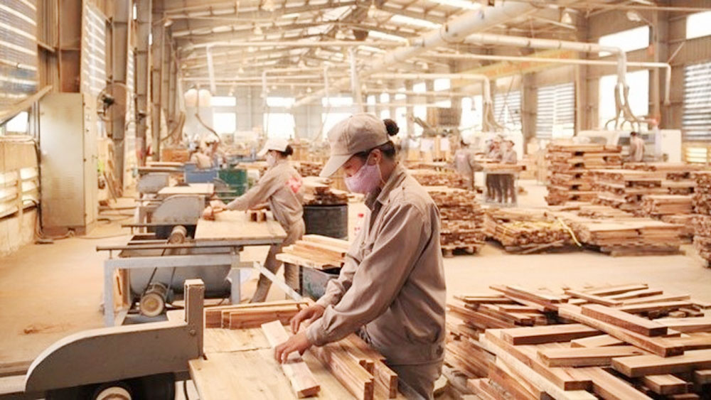 Vietnam is Asia's timber processing hub: trade association