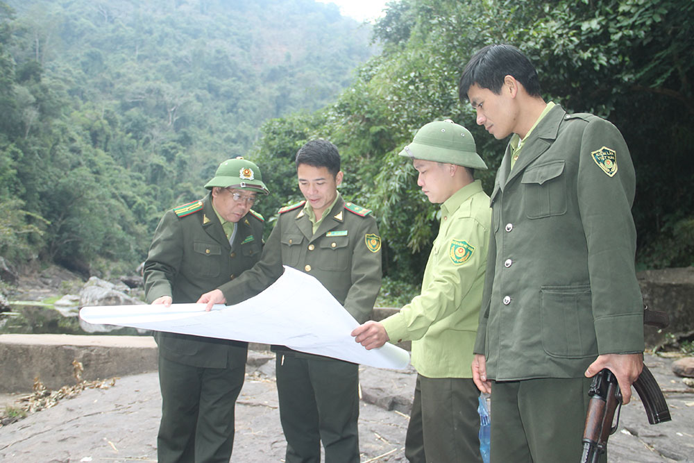 Rõ trách nhiệm, rừng được bảo vệ