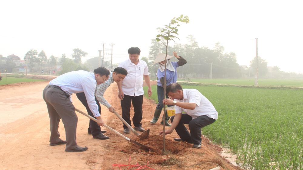 Trồng 300 cây lát hoa ven đường liên thôn