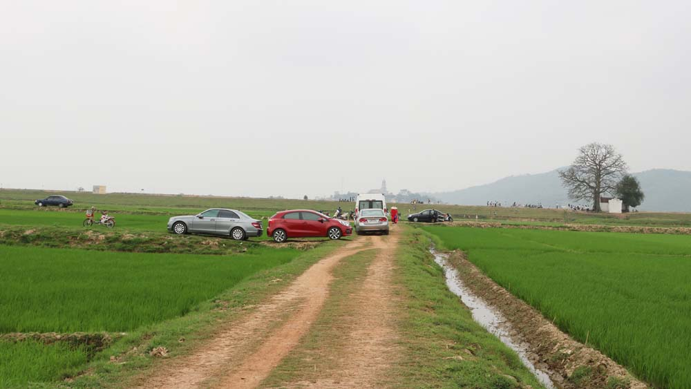 Sức hút, cây gạo, Lãng Sơn, du lịch, Yên Dũng