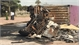 Xe container bốc cháy giữa đường, hai người trong cabin tử vong