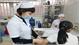 Bộ Y tế khẳng định vẫn cung ứng đủ vắcxin phòng bệnh dại