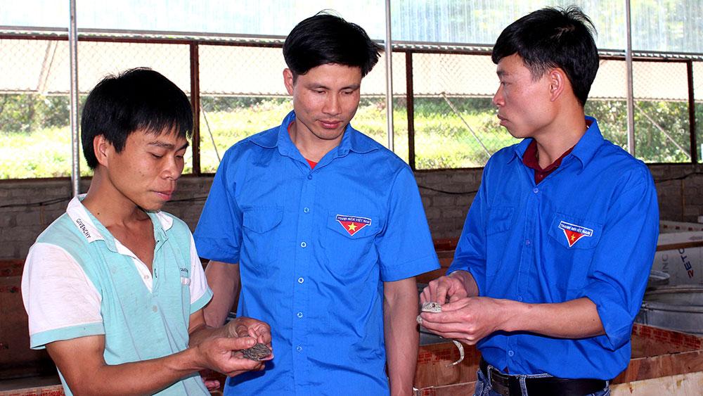 Anh Ngọc Văn Viên (ngoài cùng bên phải) chia sẻ kinh nghiệm chăm sóc tắc kè cho thanh niên địa phương.