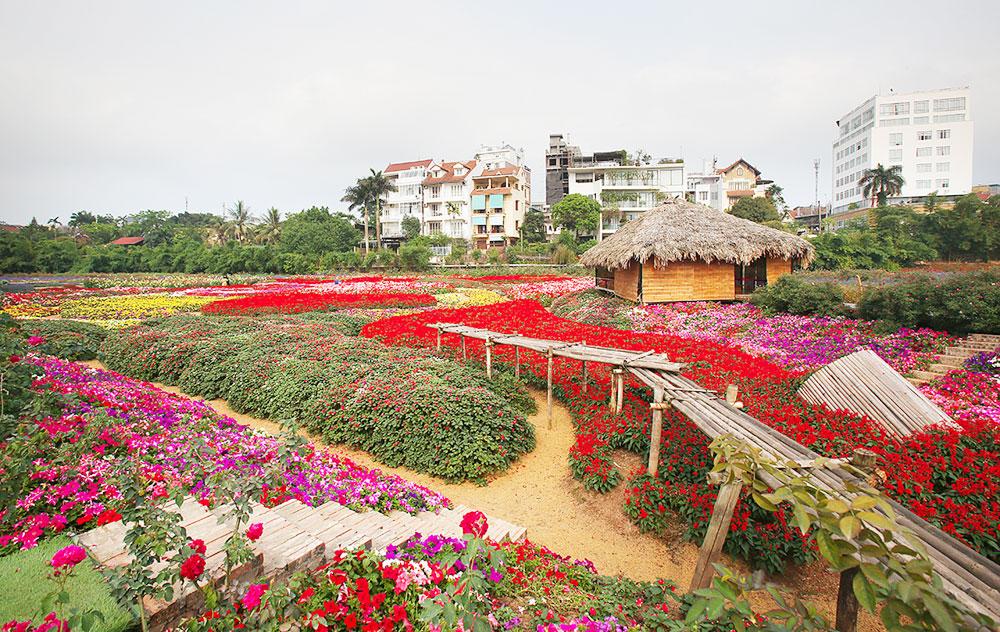 Shining bright, Flower fields, Vietnam's capital, Hanoi, biggest lake, beautiful site