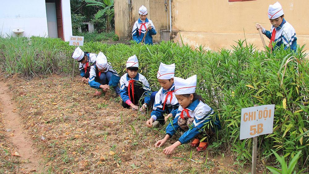 Hiệu quả, vườn rau em chăm, Trường Tiểu học Ngọc Lý