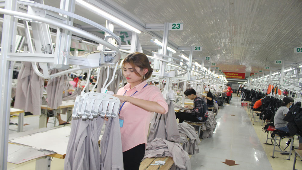 Some 5 billion VND invested to automatic garment lines