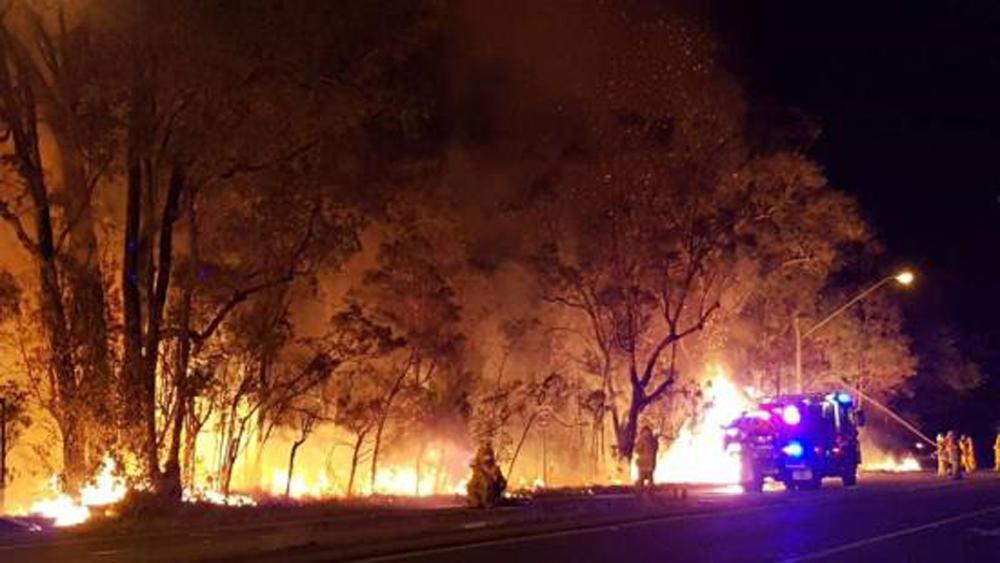 Australia, cháy hàng, nghìn hecta rừng, ngoại ô, Sydney
