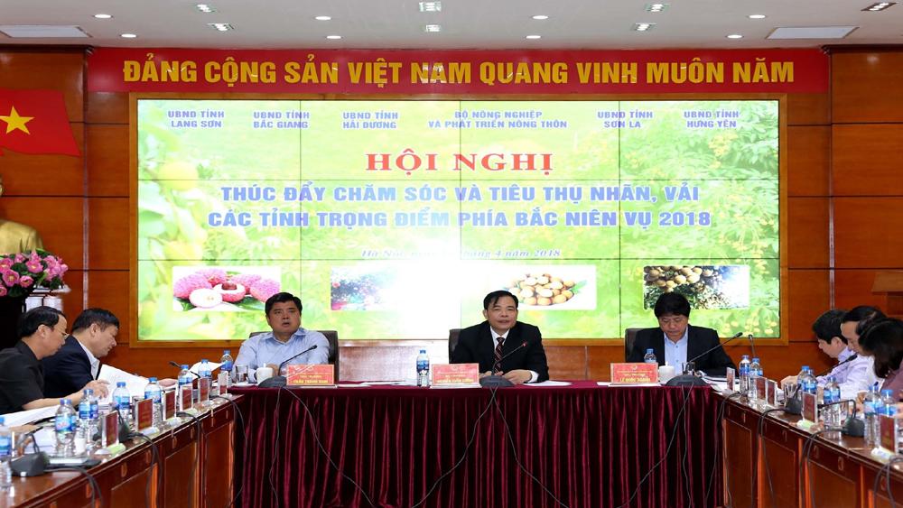 Bộ trưởng Bộ Nông nghiệp và PTNT Nguyễn Xuân Cường: Vải, nhãn được mùa nhưng không được để mất giá