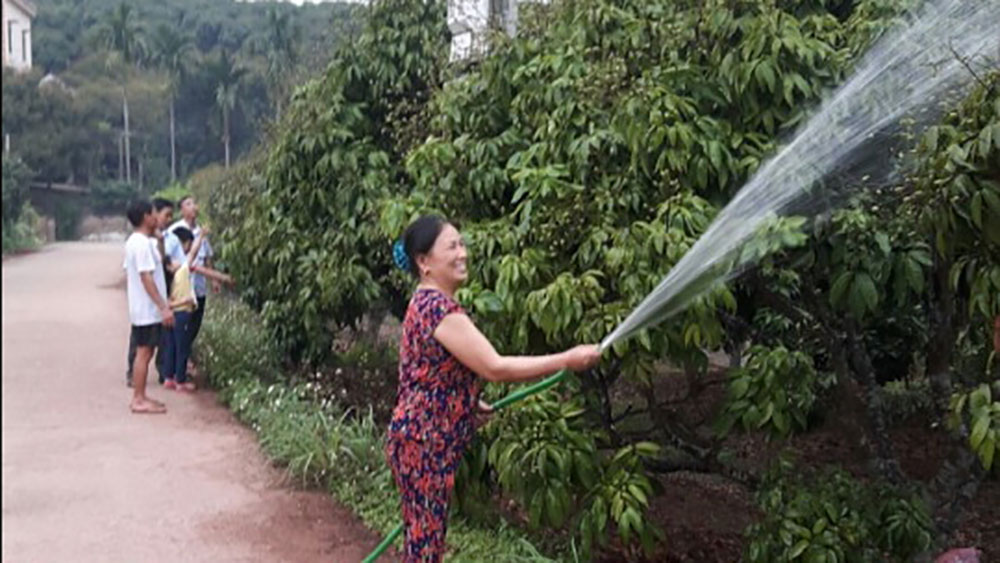 Bac Giang strictly supervises litchi production
