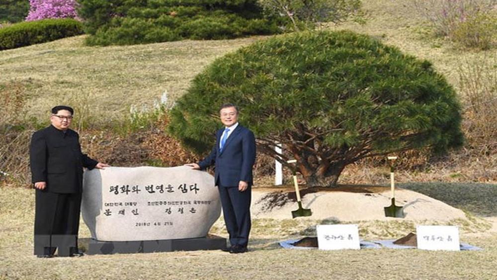 Hàn Quốc thành lập Ủy ban chuyên trách triển khai Tuyên bố Panmunjom
