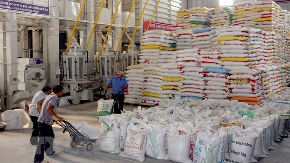 Rice exports bring home 1.1 billion USD in Jan-Apr