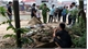 Việt Yên: Phát hiện thi thể thiếu nữ tử vong do đuối nước