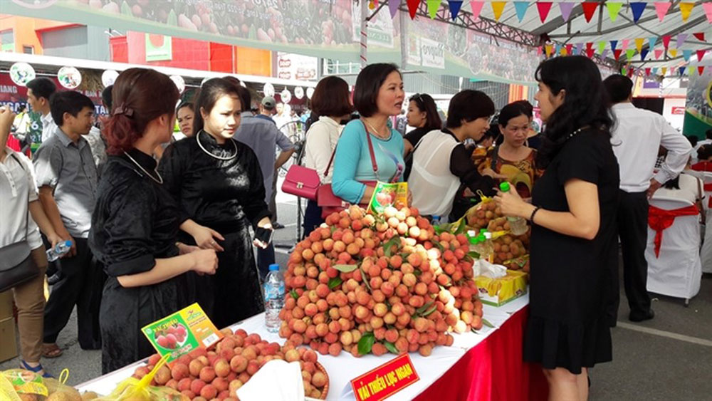 Bac Giang province, lychee consumption market, active involvement, consumption promotion campaigns, hi-quality lychee, agricultural products