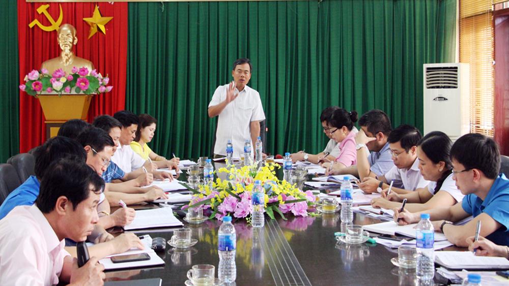 Đoàn công tác của BTV Tỉnh ủy: Giám sát thực hiện nghị quyết đại hội giữa nhiệm kỳ tại Tân Yên